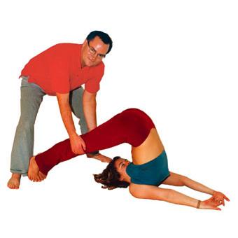 pflug halasana  wirkung videos und anleitung zu yoga