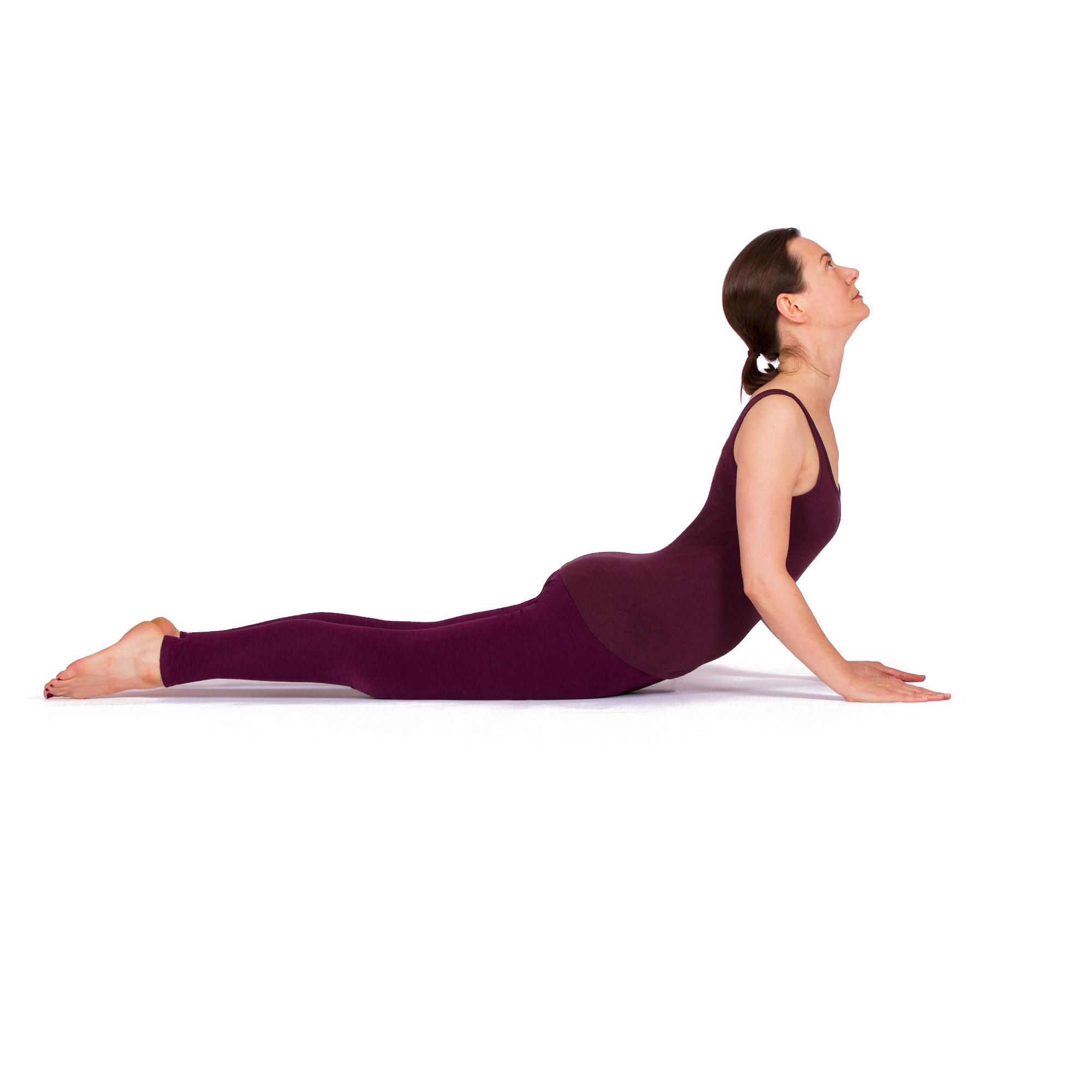 Kobra Bhujangasana Wirkung Videos Und Anleitung Zu Yoga Asanas